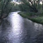 Clear Creek - Spring