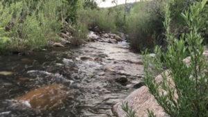 Coal Creek Colorado - Summer